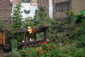 Picture of Broomhall Community Garden